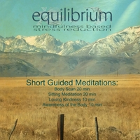 Colleen Camenisch: Short Guided Meditations