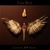 Cornelius Boots: Free Bird