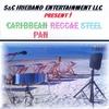 Courtney Henry: Caribbean Reggae Steel Pan