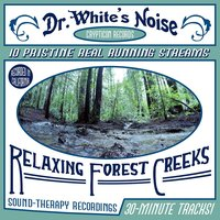 Dr. White's Noise | Relaxing Forest Creeks