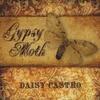 Daisy Castro: Gypsy Moth
