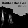 Dalibor Banović: Dunav