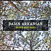 Damn Arkansan: Brave Mistakes