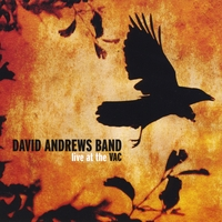 David Andrews Band | Live at the VAC