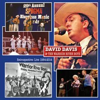 David Davis & The Warrior River Boys | Retrospective: Live 1984-2014
