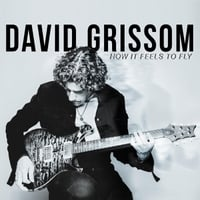 David Grissom: How It Feels to Fly