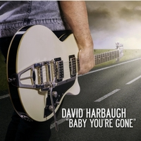 David Harbaugh | Baby You're Gone