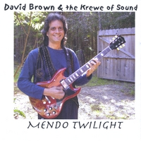 David Brown & the Krewe of Sound | Mendo Twilight