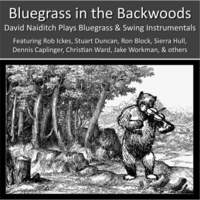 David Naiditch | Bluegrass in the Backwoods