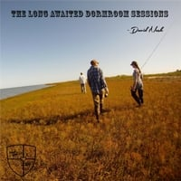 David Nash: The Long Awaited Dormroom Sessions