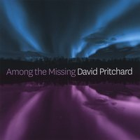 David Pritchard | Among the Missing
