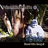 David Vito Gregoli: Primordial Sonics