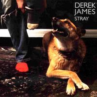 Albumcover für Stray