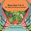 Diamond Jim Hewitt: Barn Jazz, Vol. 2 (The Night of the Dancing Vegetables)