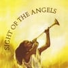 Dianne Steele: Sight of the Angels