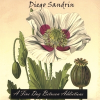 Diego Sandrin | A Fine Day Between Addictions
