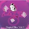 VARIOUS ARTISTS: Digital Bliss Vol 1