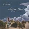 Divasonic: Changing Wind