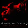 DAVID M. BAILEY: Silent Conversation