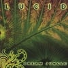 Dream Jungle: Lucid