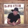 DAVID STEEN: Life
