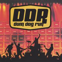 Dum Dog Run | Dum Dog Run