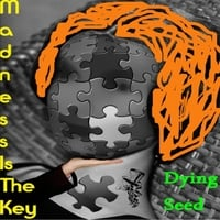 Dying Seed: Madness Is the Key