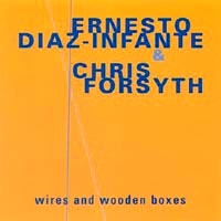 Ernesto Diaz-Infante & Chris Forsyth: Wires and Wooden Boxes