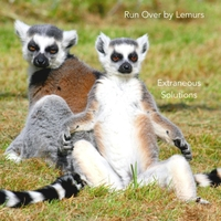 Extraneous Solutions | Run Over By Lemurs