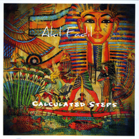 Akil Fadil | Calculated Steps