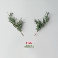 Fiv5 | Winter Wonderland