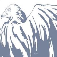 SARAH FIMM: White Birds