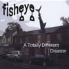 Fisheye: A Totally Different Disaster