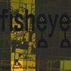 Fisheye: Bigger than Your Head