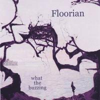 floorian | what the buzzing
