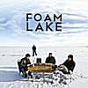 Foam Lake: Force and Matter