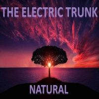 The Electric Trunk | Natural