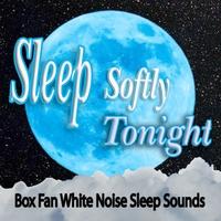 Sleep Softly Tonight   Box Fan White Noise Sleep Sounds   CD