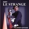 Gary Le Strange: Polaroid Suitcase
