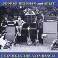 George Brigman and Split | I Can Hear the Ants Dancin'