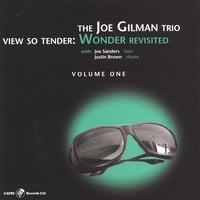 Joe Gilman | View So Tender: Wonder Revisted Vol. 1