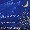 Giuliano Perin: Pezzi di luna