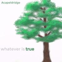 Acapeldridge | Whatever Is True | CD Baby Music Store