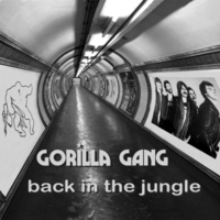 Gorilla Gang | Back in the Jungle