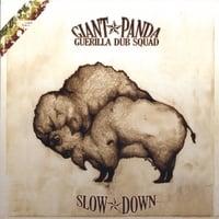 Cover de SLOW DOWN