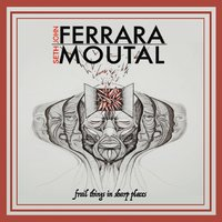 John Ferrara & Seth Moutal | Frail Things in Sharp Places