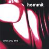 HEMMIT: What You See (Is What You Get)