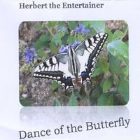 Herbert the Entertainer | Dance of the Butterfly