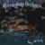 HERRINGBONE ORCHESTRA: Sea Witch