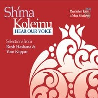 Various Artists | Sh'ma Koleinu ~ Hear Our Voice II